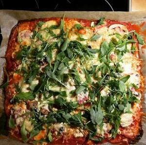 Bio Protein Pizza