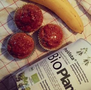 Bio Protein Muffins